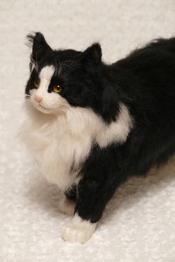 ノルウェージャンフォレストキャット ミユ 羊毛フェルト猫人形 ミメット 熊木早苗