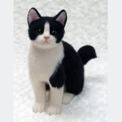 白黒はちわれメンちゃんのサムネイル画像