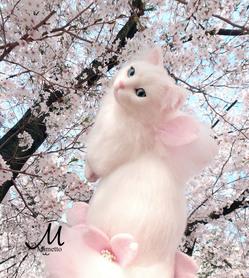 桜花 桜の精 四月 弥生 花吹雪 熊木早苗 ミメット 満開 羽 妖精