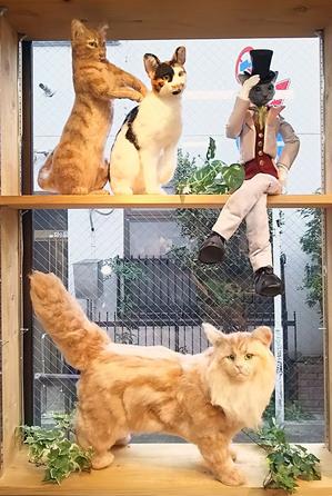 錆猫ギャラリー 東京羊毛猫本社 ミメット 熊木早苗