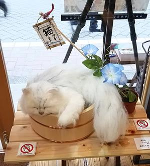 錆猫ギャラリー 東京羊毛猫本社 ちゃちゃきなな ユザワヤ佳作作品