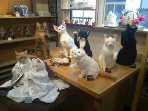 熊木早苗 羊毛フェルト うちのこそっくり 吉祥寺 錆猫ギャラリー 猫人形 ねこ