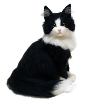 ノルウェージャンフォレストキャット ミユ しろくろ はちわれ 熊木早苗 ミメット 猫 うちのこそっくり
