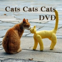 Cats Cats Cats(DVD) 送料無料
